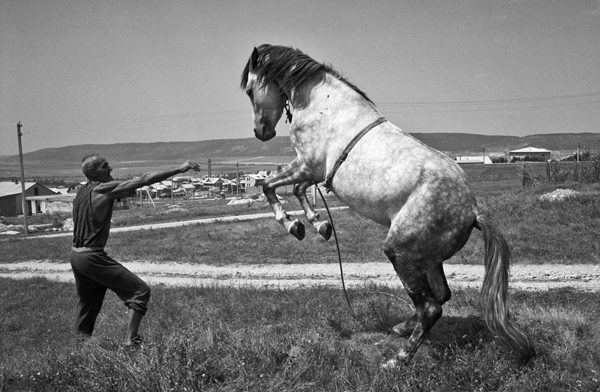 Muhammed Suleimanov and his horse. July 2006