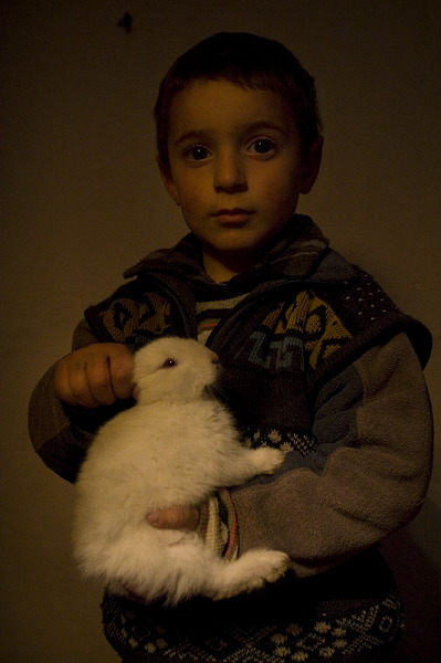 Portrait of 4 years old Artur Petrosyan with his rabbit.