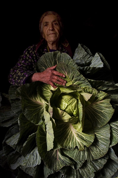 Emma Hayrapetyan with not grown cabbage, the spread leaves should have composed the head.