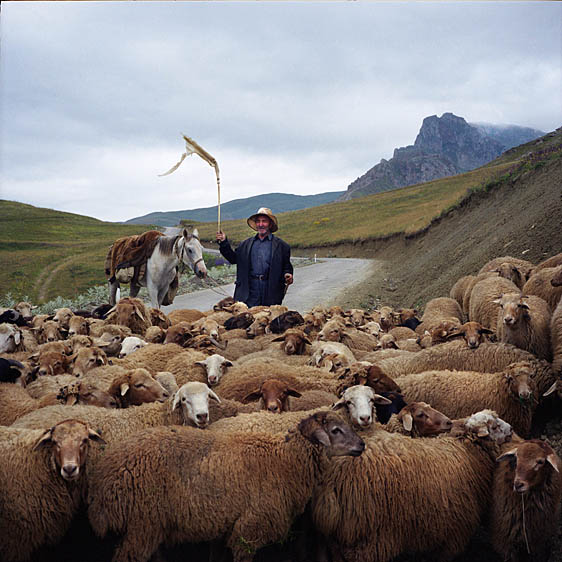 Shepherd on the way to the village. Xinaliq, July 2009